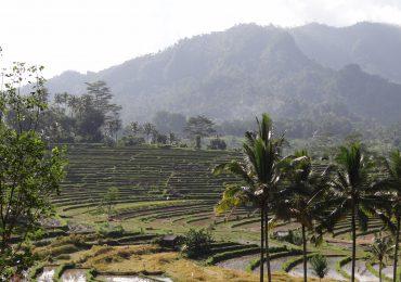 Als u toch in Bali bent