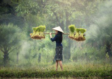 Avontuurlijk noord Laos